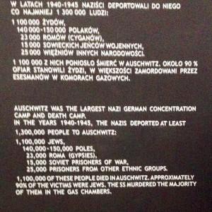 Auschwitz aantallen