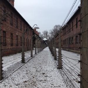 Auschwitz afzetting