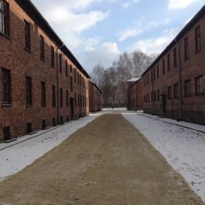 Auschwitz blokken